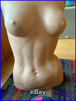 Vintage DG Williams mannequin torso and head